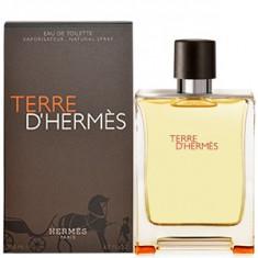 Hermes Terre D'Hermes EDT Tester 100 ml pentru barbati