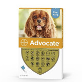 Advocate 100 Caine (4 - 10 kg), 3 pipete, Bayer