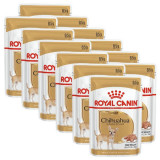 Cumpara ieftin ROYAL CANIN ADULT CHIHUAHUA 12 x 85 g - pungă