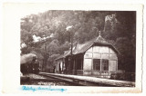2331 - VADU CRISULUI, Bihor, Railway Station - old PC, real PHOTO - used - 1940, Circulata, Fotografie