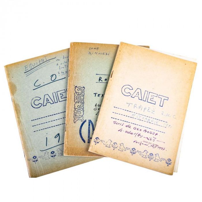 Geo Bogza 3 caiete manuscrise 1970-1981