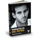 Miracolul Del Potro | Sebastian Torok
