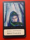 BALTAGUL × Mihail Sadoveanu