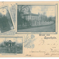 4258 - AGNITA, Sibiu, Litho, Romania - old postcard - used - 1900, Circulata, Printata