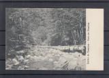 SALUTARE  DIN  CAMPULUNG   BUCOVINA   CIRCULATA  1915