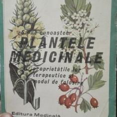 Sa ne cunoastem plantele medicinale – Gr. Constantinescu