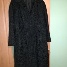 Palton astrahan