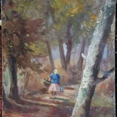 Dan Bajenaru (1900-1988), In padure