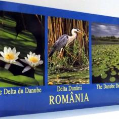 LA DELTA DU DANUBE / DELTA DUNARII / THE DANUBE DELTA , ROMANIA , 2002
