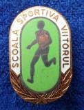 Insigna elevi Pionieri Scoala Sportiva VIITORUL - email la cald Superba