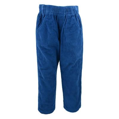Pantaloni de catifea pentru baieti GT 2789, Albastru foto