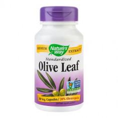 Olive Leaf 20% SE, 60cps, Nature's Way