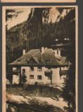 CPI B14230 CARTE POSTALA - LACUL ROSU, GHILCOS, CAMINUL CCS, LIBRARIA NOASTRA