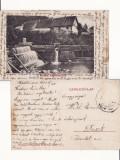 Poiana Marului, Bistra( Caras Severin, Banat) -  rara, Circulata, Printata