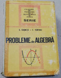 C Cosnita, F Turtoiu Probleme de algebra 1972