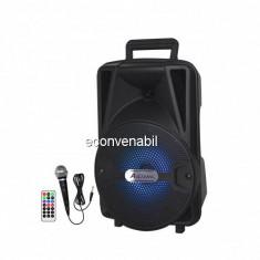 Boxa Portabila cu Radio FM, USB, MIC si Telecomanda Ailiang UFA81DT