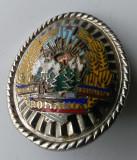Insigna RARA Subofiter MILITIE - Coifura  insemn cascheta - cuc - 1970 CEAUSESCU