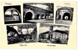 Oradea ilustratie mozaic, Circulata, Printata