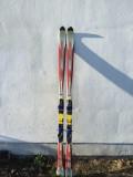 Skiuri Fischer