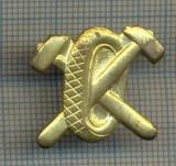 Y 1695 INSIGNA - MILITARA -SEMN DE ARMA - AUTO -PENTRU COLECTIONARI