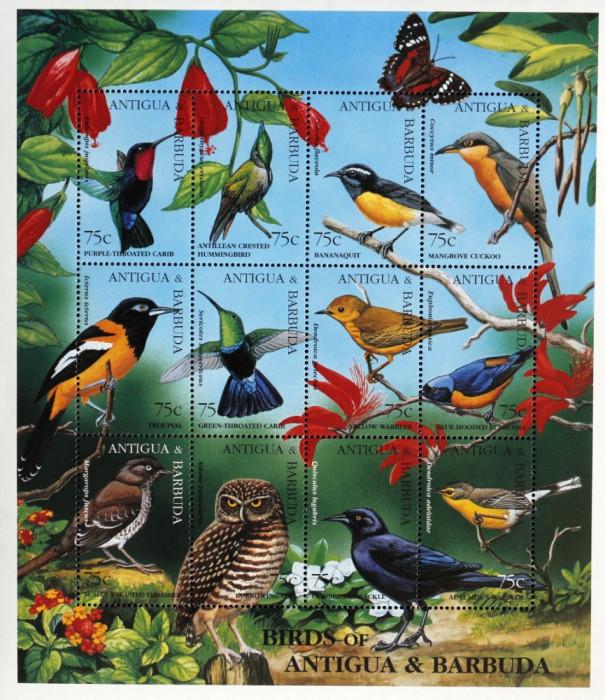 Antigua&Barbuda - Pasari Rare din Antigua- coala mica, NEOBLITERATA -CW 317