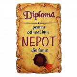 Magnet Diploma pentru Cel mai bun NEPOT din lume, lemn, Alexer