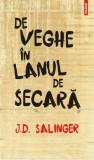 Pachet J.D. Salinger