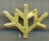Y 1812 INSIGNA - MILITARA -SEMN DE ARMA -VANATORI DE MUNTE  -PENTRU COLECTIONARI