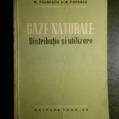 M. PAUNESCU si M. POPESCU - GAZE NATURALE * DISTRIGUTIE SI UTILIZARE