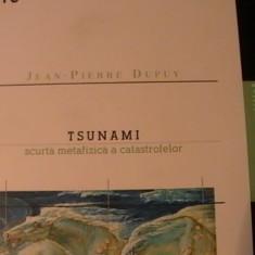 TSUNAMI-JEAN PIERRE DUPUY-SCURTA METAFIZICA A CATASTROFELOR-