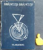 Brancusi-Brancusi vol. 1 V.G. Paleolog