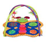 Covoras de joaca PlayTo 31611, Multicolor