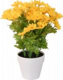 Cumpara ieftin Crizanteme Galbena Artificiale in ghiveci Alb, sunt rezistente la Umiditate, Aspect natural, pentru interior sau exterior, D floare 37 cm, D ghiveci 1