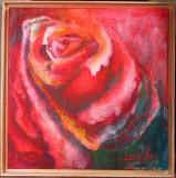 Trandafiri - semnat  Dana AK 2015
