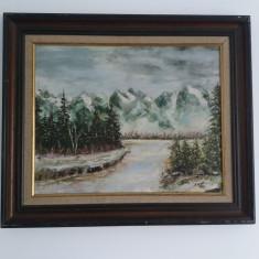 Tablou Vechi - Peisaj Munte - Inceput de furtuna - semnat Irmi (17)