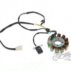 Magnetou ATV Loncin 200cc 11 bobine - Wilmat