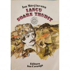 Iancu, soare trudit - Ion Margineanu