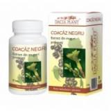Coacaz negru muguri- 50 ml, Dacia Plant