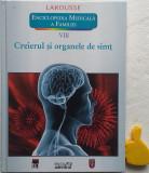Creierul si organele de simt Yves Morin