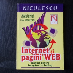 Internet si pagini web – Marcel Andrei Homorodean, Irina Iosupescu