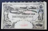 Actiune Societatea de navigatiune pe Dunăre SRD - A. Saligny - titlu , actiuni