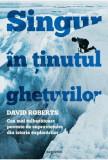 Singur in Tinutul gheturilor. Cea mai tulburatoare poveste de supravietuire din istoria explorarilor/David Roberts