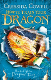 How to Train Your Dragon: How to Fight a Dragon's Fury Book 12