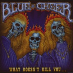 Blue Cheer What Doesnt Kill You (cd)