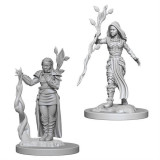 Set Figurine Dungeons And Dragons Nolzur S Unpainted Human Female Druid