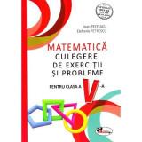 Matematica - Culegere de exercitii si probleme pentru cls a V-a   Ioan Pelteacu, Elefterie Petrescu, Aramis