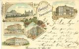 Timisoara litografie 1898, Circulata, Printata