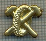 Y 1824 INSIGNA - MILITARA -SEMN DE ARMA - AUTO  -PENTRU COLECTIONARI