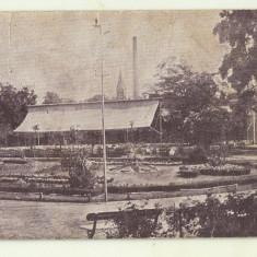 cp Baile Buzias : vedere din Parc - anii 1920