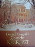 """Destinul Colegiului ,,costache Negruzzi"""" - Colectiv ,549274"""